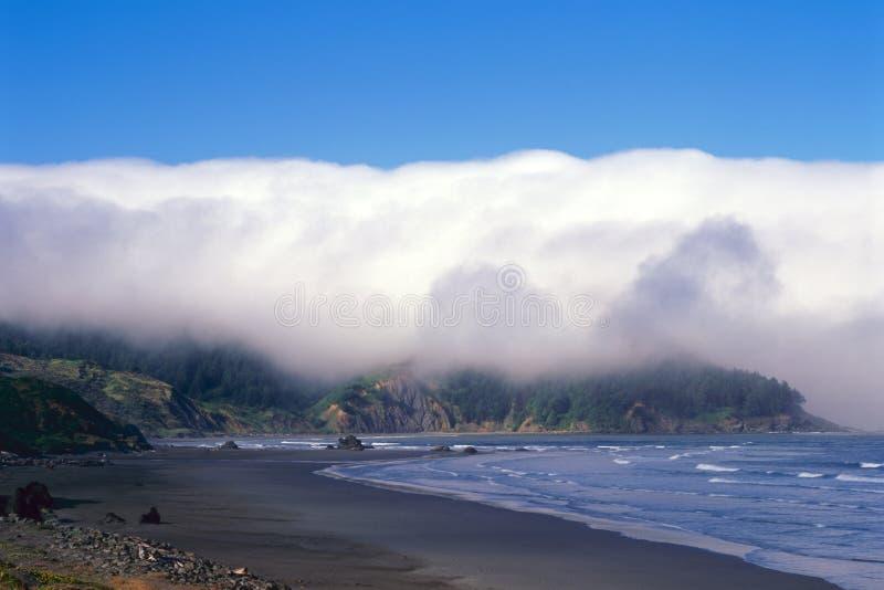 俄勒冈海岸和海岸线 库存照片