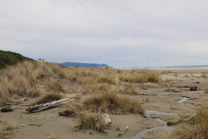 俄勒冈海岸海滩 免版税库存图片