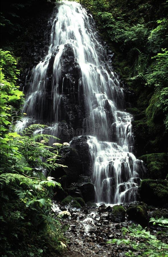 俄勒冈瀑布 免版税图库摄影