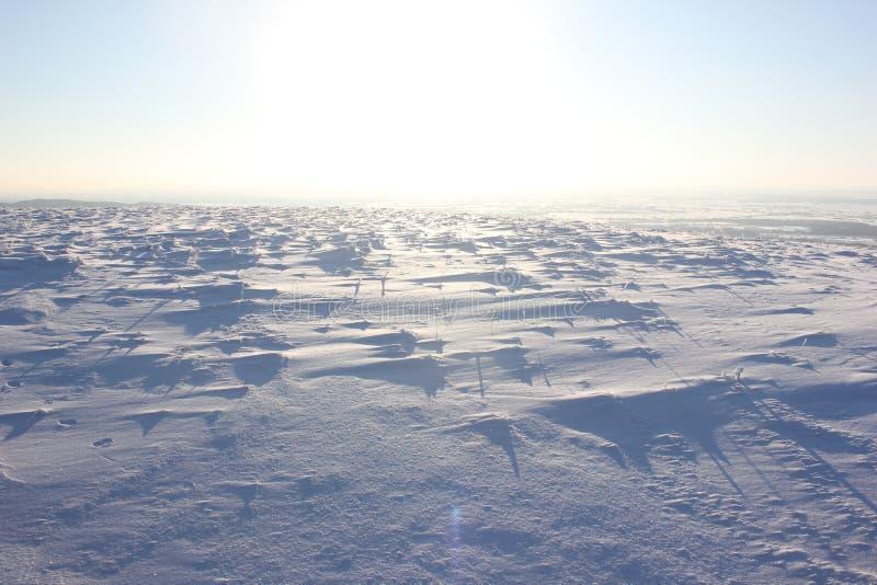 俄国冬天-最严厉地球上 免版税库存图片