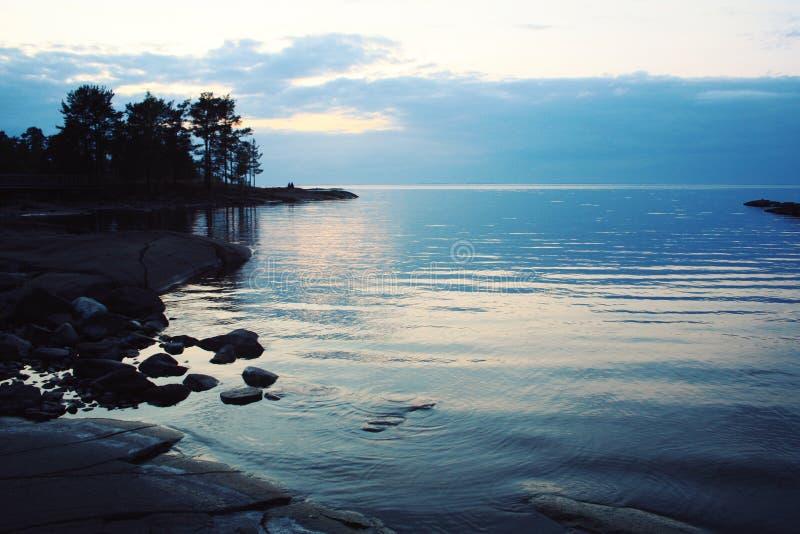 俄国北部的狂放的本质 湖和杉树 免版税库存图片