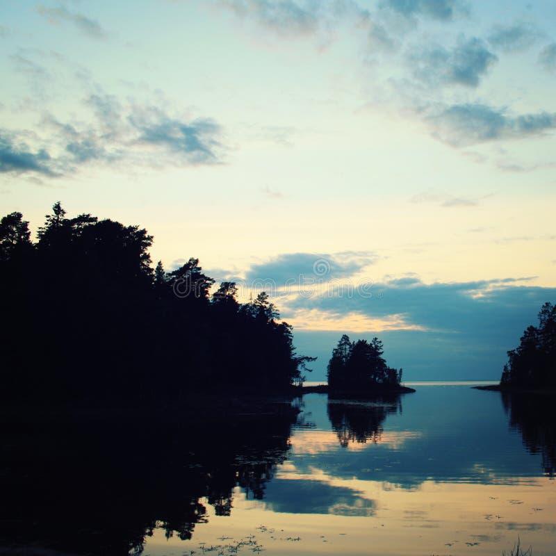 俄国北部的狂放的本质 湖和杉树 库存照片