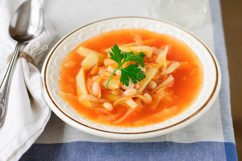 俄国圆白菜汤, Shchi (Stchi) 免版税库存照片