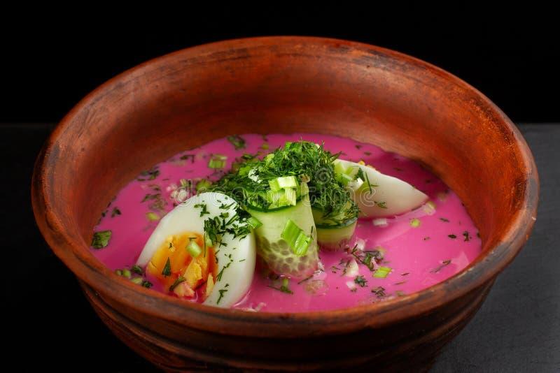 俄国圆白菜汤- Borsht用鸡蛋和葱 库存照片