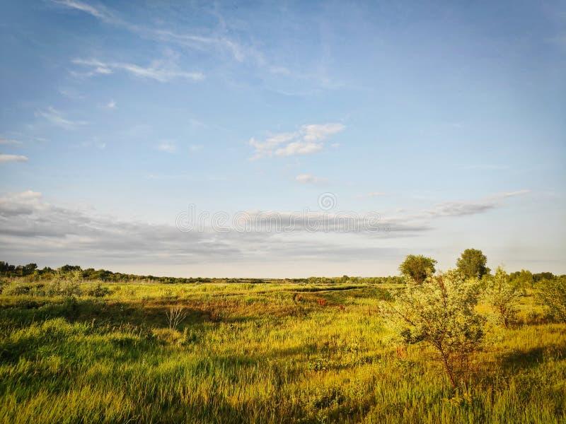俄国自然风景照片在夏天晴朗的晚上 图库摄影