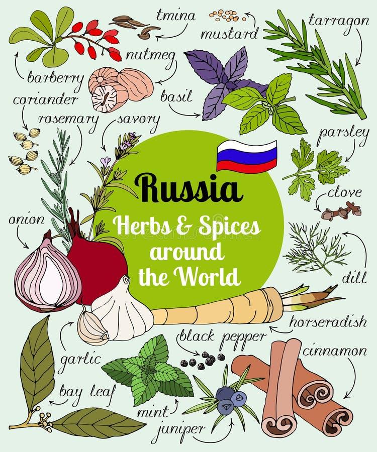 Download 俄国草本和香料 向量例证. 插画 包括有 男低音, 生态, 吟游诗人, 自然, 钞票, 标记, 例证, 芥末 - 72358051