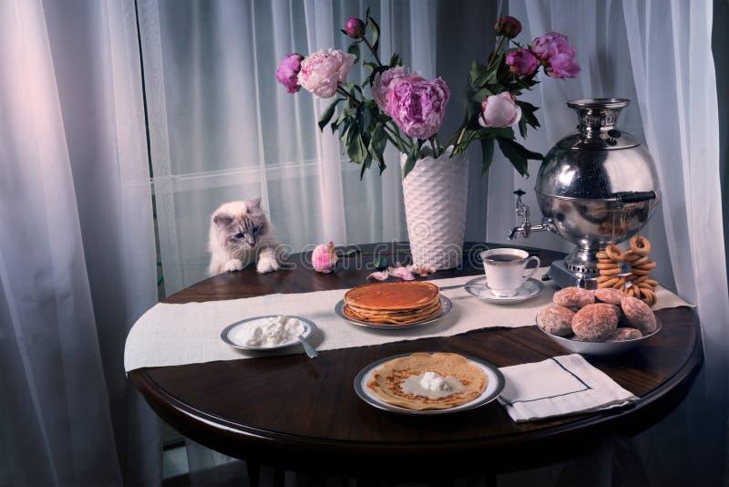 俄国西伯利亚猫在酸性稀奶油的桌上要 早餐准备好在桌上:薄煎饼,热的茶 免版税库存照片