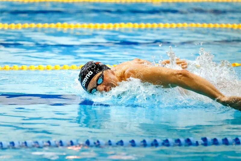 俄国运动员游泳者游泳蝶泳 免版税库存图片