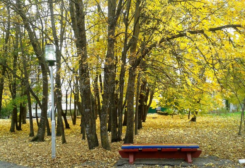 俄国 公园 免版税库存照片