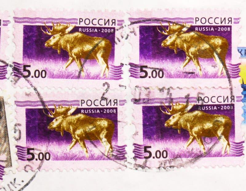 俄罗斯印制的邮票显示,2008年前后第5期俄罗斯联邦甲级联赛 库存图片