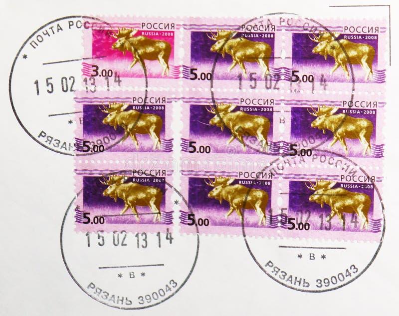 俄罗斯印有梁赞镇邮政局邮票的邮票显示麋鹿谷,第5期俄文 免版税库存照片