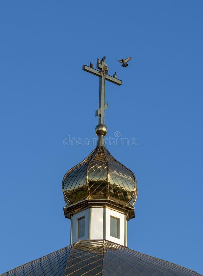 俄罗斯正教会的金黄圆顶与十字架焕发的在反对天空蔚蓝和鸽子的上升的春天太阳特写镜头 库存照片