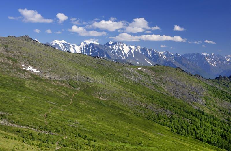俄罗斯西伯利亚阿尔泰山夏季高山景观 免版税库存图片