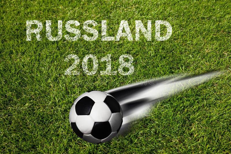 俄罗斯足球冠军 图库摄影