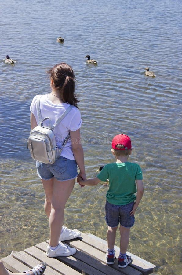 俄罗斯,克拉斯诺亚尔斯克,2019年6月:人们在池塘喂养鸭子 库存图片