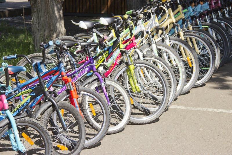 俄罗斯,克拉斯诺亚尔斯克,2019年6月:自行车为租是可利用的 库存照片