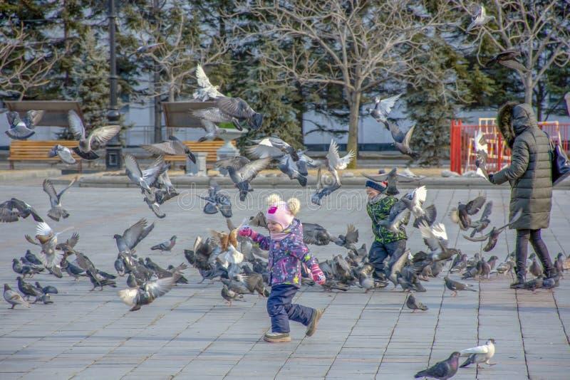 俄罗斯,哈巴罗夫斯克,列宁广场:与鸽子的儿童游戏 库存图片