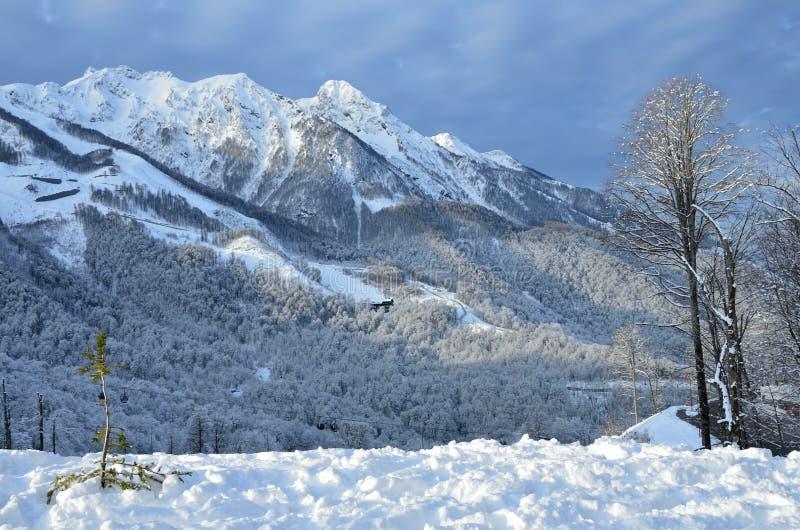 俄罗斯,索契,滑雪胜地罗莎Khutor 早晨在多云天气的冬天风景 免版税图库摄影