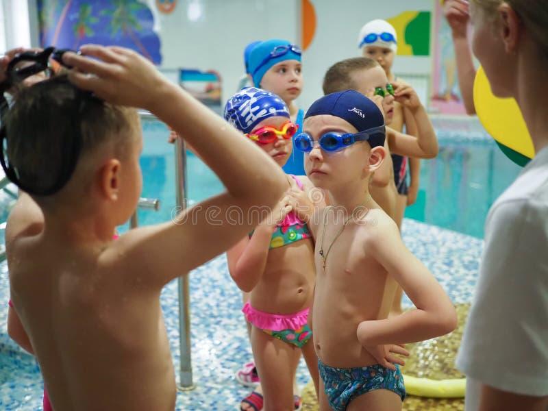 俄罗斯,萨拉托夫- 2019年5月12日:孩子,运动员,游泳者沿在体育水池的轨道游泳游泳的 游泳在水池的体育 库存图片