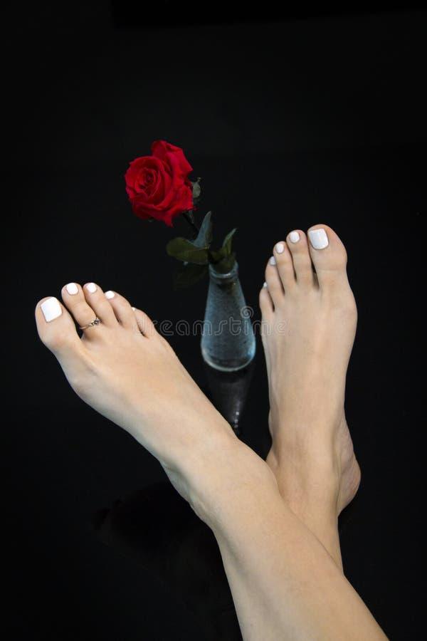 俏丽的在玻璃花瓶在中部,在抽象黑背景的妇女脚的脚横渡的和美丽的红色玫瑰 库存照片