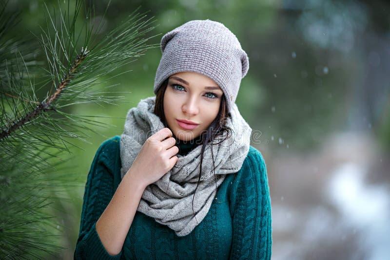 俏丽的妇女画象室外在与雪的一个冬天 免版税库存图片