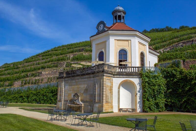 俏丽的小的教堂在撒克逊人的葡萄园里 免版税库存图片