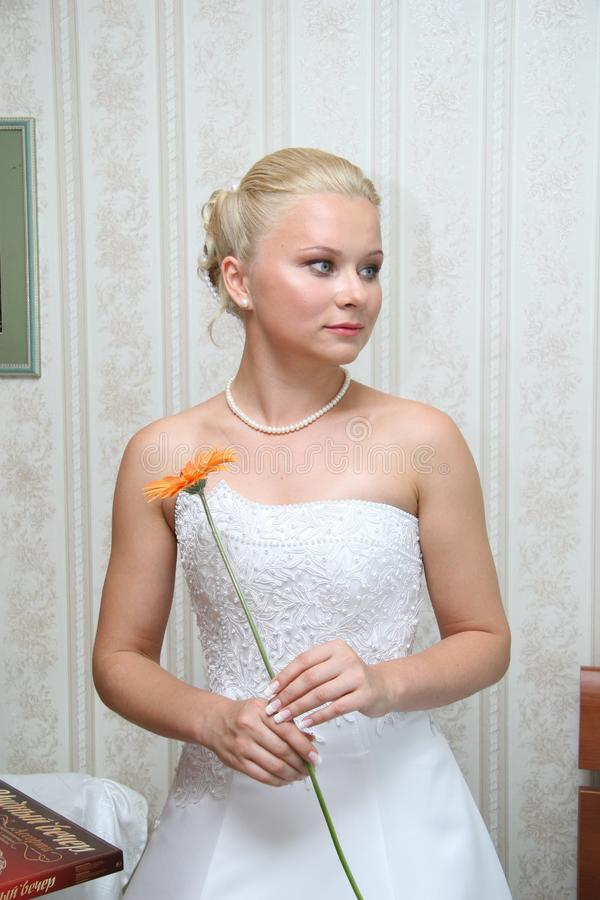 俏丽的新娘 库存图片