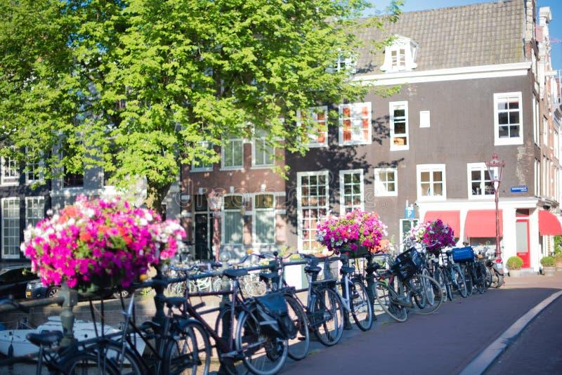 俏丽的花和许多自行车沿一座运河桥梁在阿姆斯特丹 图库摄影