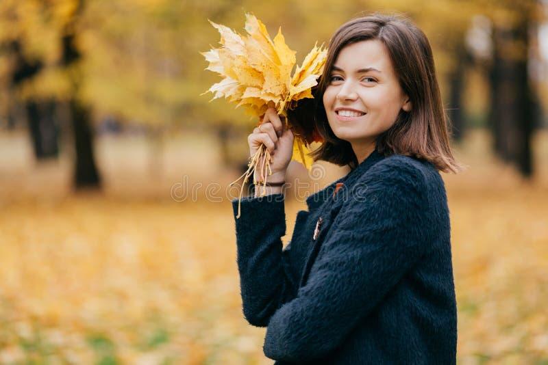 俏丽的轻松的妇女室外射击呼吸新鲜空气,在心情,运载黄色叶子,穿戴在外套,摆在反对 库存图片