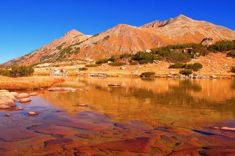 保加利亚冰河湖国家公园pirin 库存照片