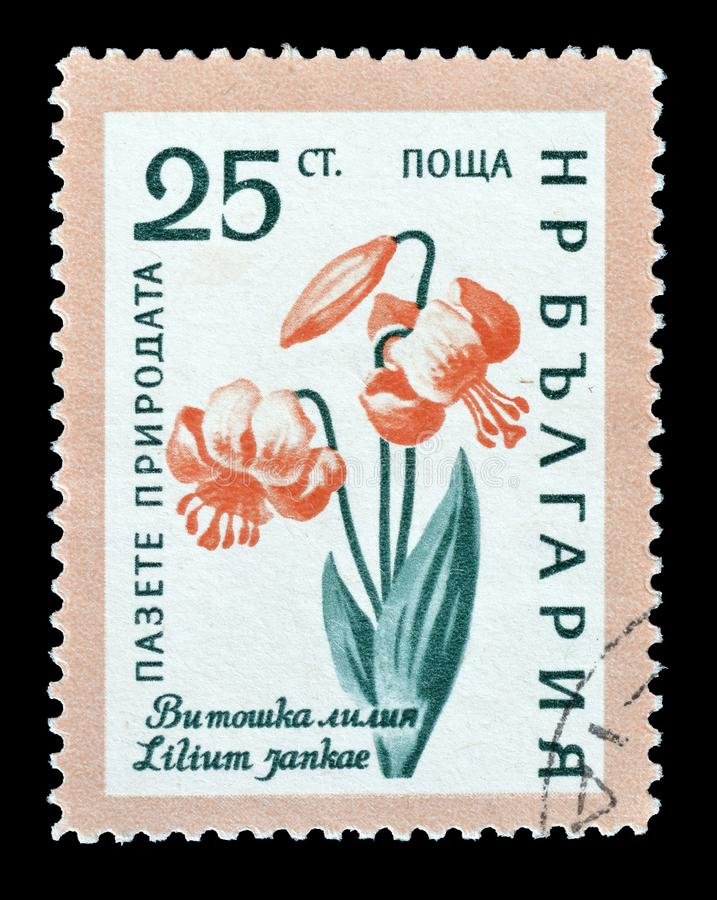 保加利亚打印的邮票 图库摄影