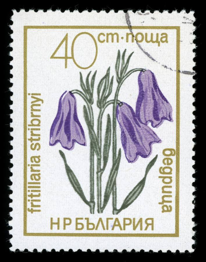 保加利亚`保护了花`系列邮票, 1972年 库存照片