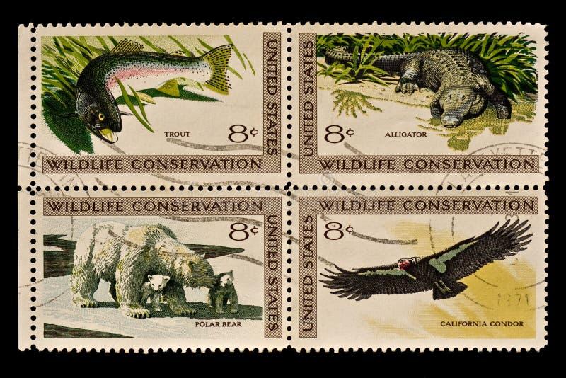保护邮政印花税野生生物 图库摄影