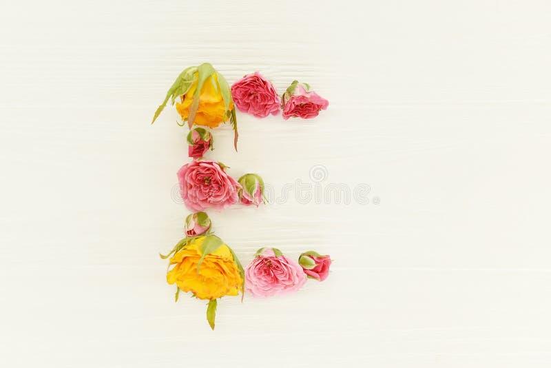 信件'E'从多彩多姿的玫瑰的芽在轻的木背景的 库存照片