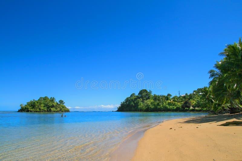 信天翁从乌波卢岛海岛海岸的海岛视图,有水晶纯净的大海的原始热带沿海天堂在太平洋 免版税图库摄影