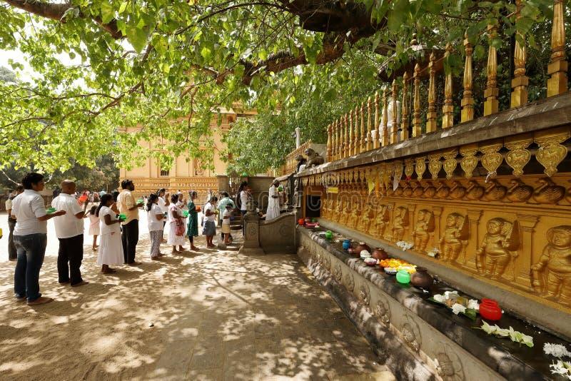 信徒在从Kelaniya王侯玛哈Vihara寺庙的Bodhi树下在科伦坡 免版税库存照片