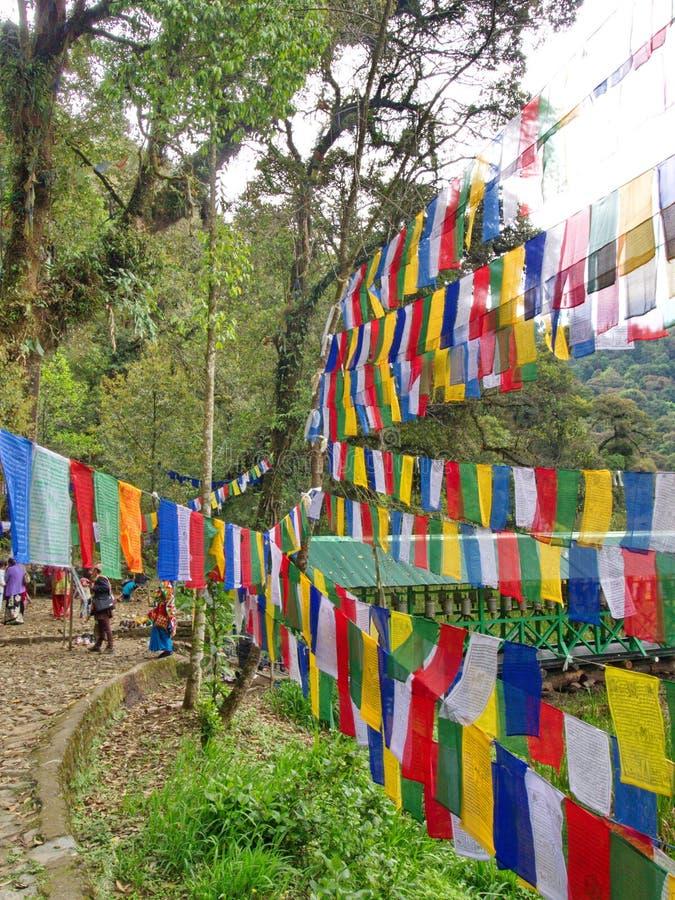 信念、和平、智慧、同情和st的西藏祷告旗子 免版税图库摄影