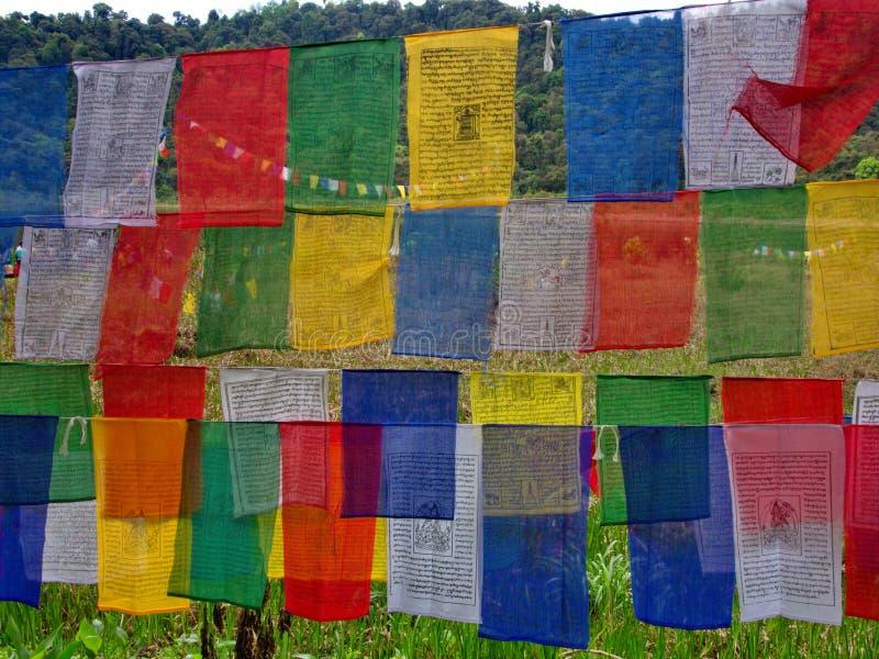 信念、和平、智慧、同情和st的西藏祷告旗子 库存图片