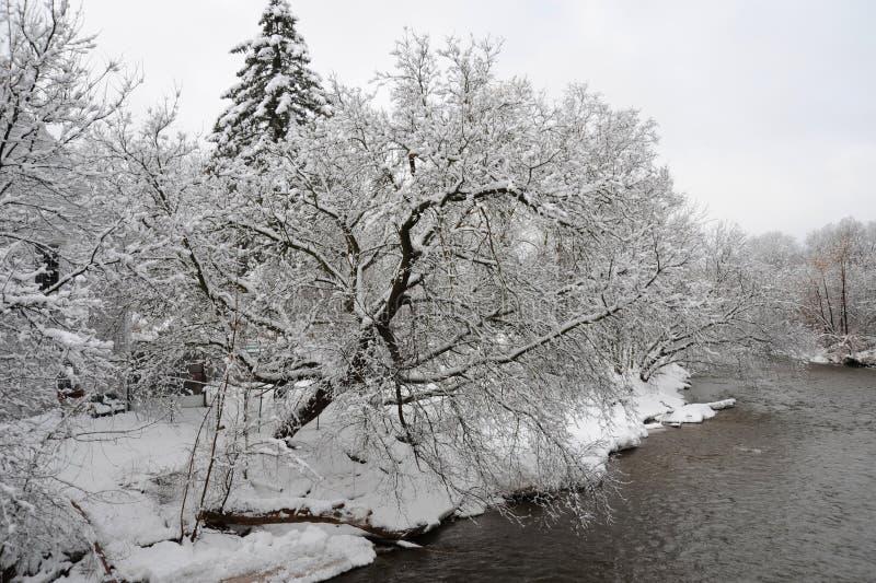 信用河在冷的冬天早晨 免版税图库摄影