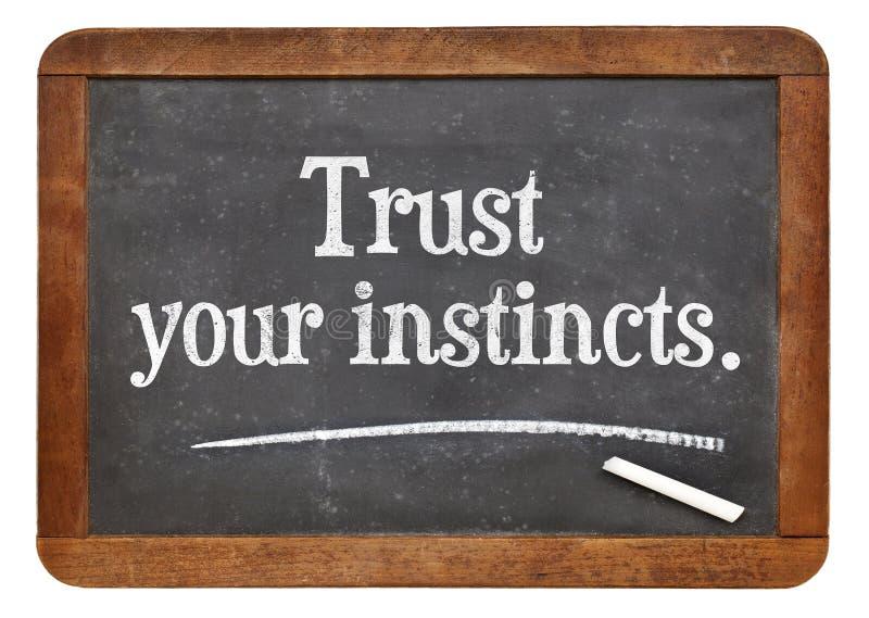 信任您的天性 免版税库存图片