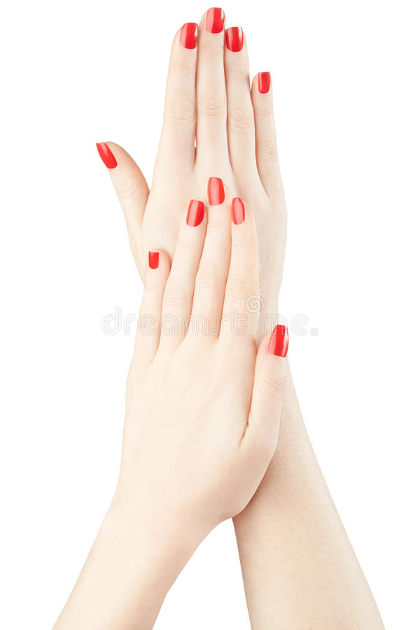 修剪在有红色指甲油的妇女手上 库存图片