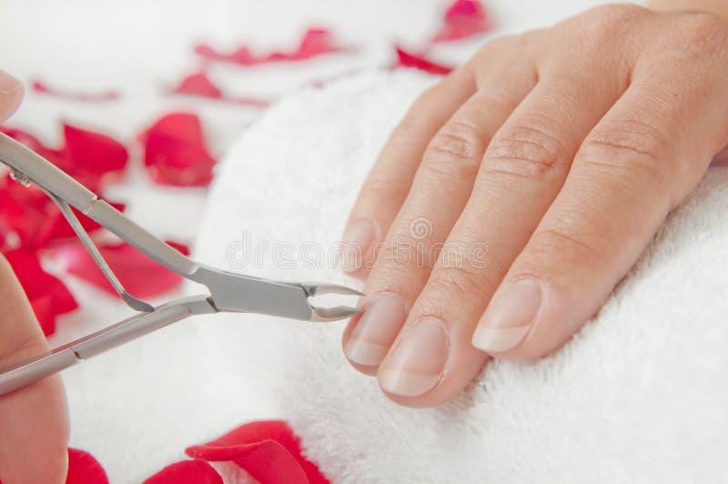 修剪在美容院-在治疗期间的妇女棕榈 韩 免版税库存照片