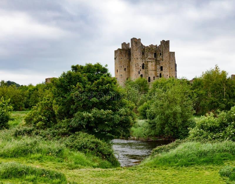 修剪城堡在爱尔兰 库存照片