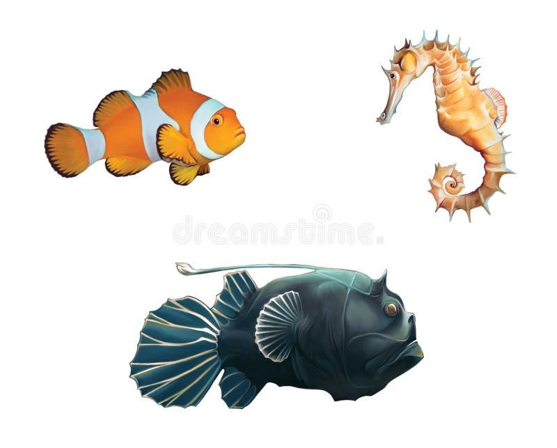 修士鱼、小丑鱼和海马。 皇族释放例证