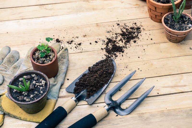 修平刀、手叉子、锄叉子、从事园艺的手套和芦荟维拉盆栽植物木背景的 免版税库存照片