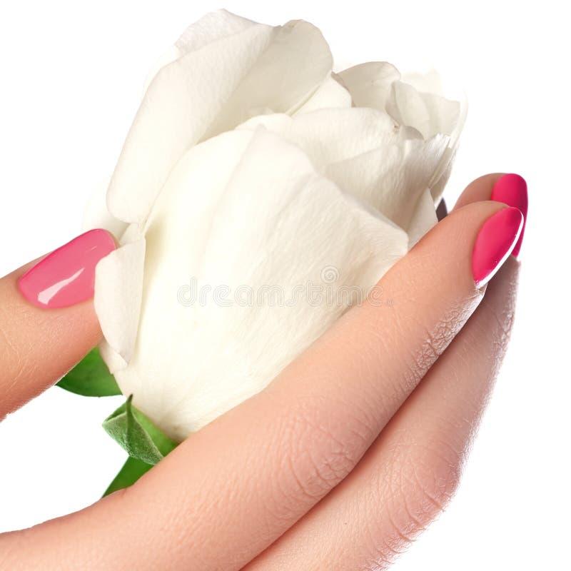 修指甲、手&温泉 美好的妇女手,软的皮肤, beautif 免版税库存照片