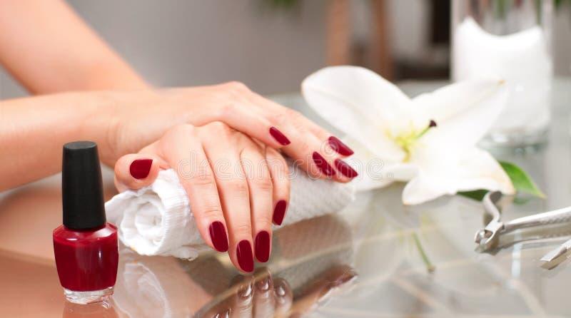 修指甲概念 美好的woman& x27; 有完善的修指甲的s手在美容院 免版税库存照片