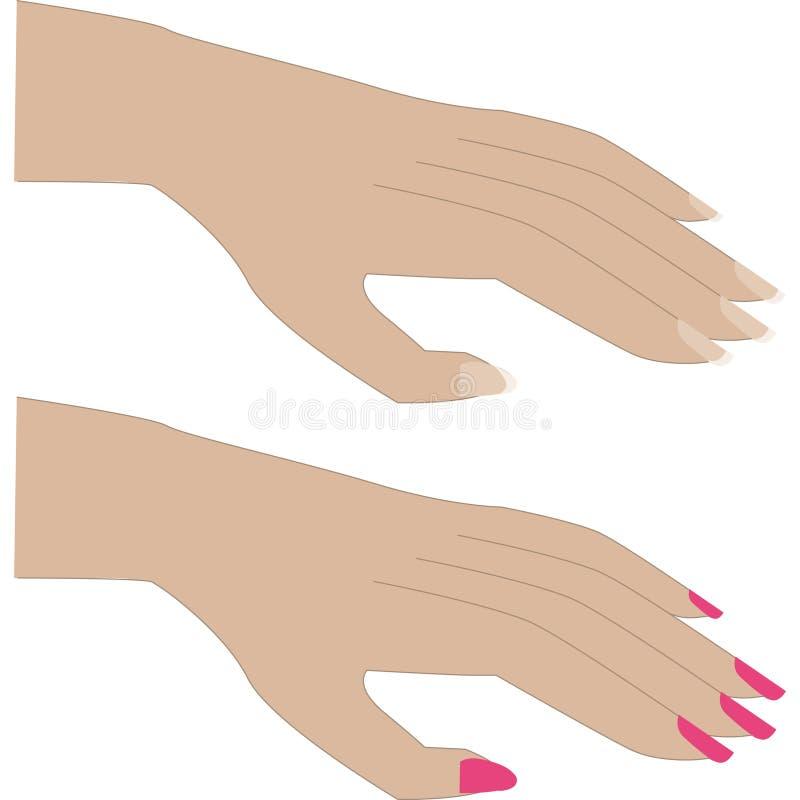 修指甲 向量例证