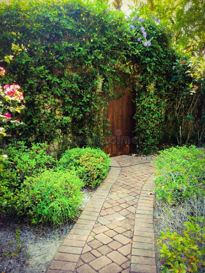 修补路对伸出的藤和一个老土气门神秘园入口  库存照片