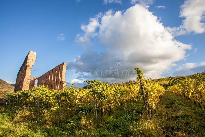 修道院废墟Suben和摩泽尔葡萄园德国 库存图片